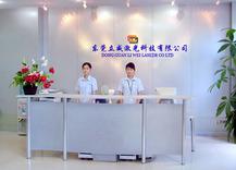 东莞市立威激光科技有限公司